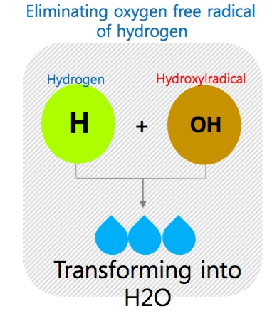 eliminating oxygen free radical of hydrogen.jpg